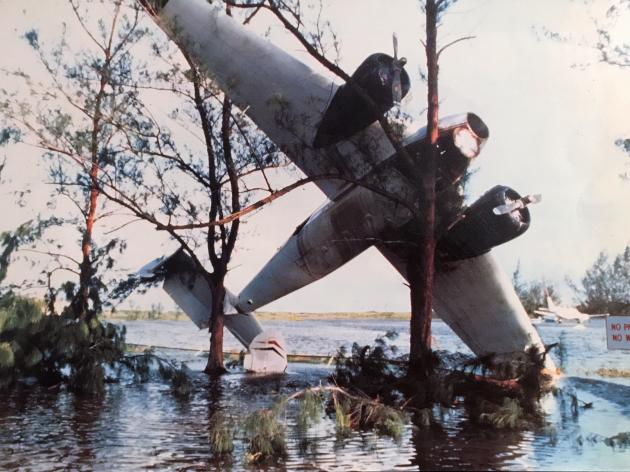 Cessna in a tree at Norman Manley airport during Hurricane Gilbert | Credit: Richards of Gamma via the book Hurricane Gilbert by Hill & Ogley & Hooley