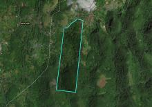 Photo of Jamaican Property Farm Land For Sale at CHATHAM MOUNTAIN, Chatham, St. James, Jamaica