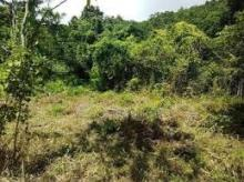 Main image of Jamaican Property For Sale in Belfield, St. Catherine, Jamaica