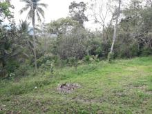 Photo of Jamaican Property House For Sale at TIMBER CLOSE, Montego Bay, St. James, Jamaica
