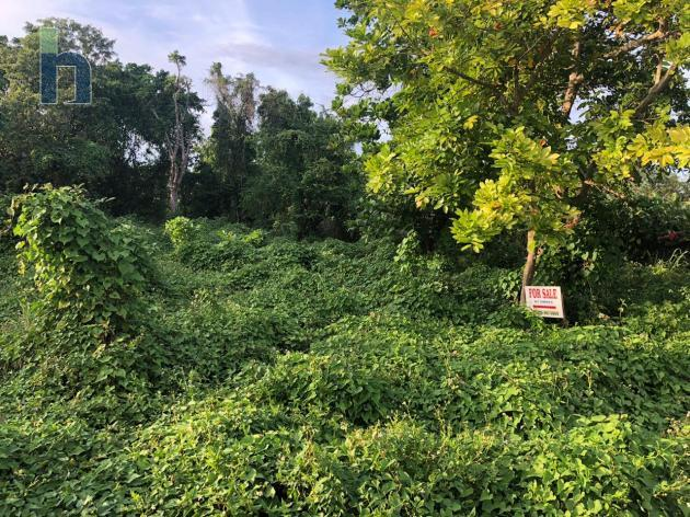 Photo #2 of 7 - Property For Sale at Lot 2A PROVIDENCE MT, WEST END NEGRIL, West End, Westmoreland, Jamaica. Residential Land with 0 bedrooms and 0 bathrooms at USD $72,500. #540.